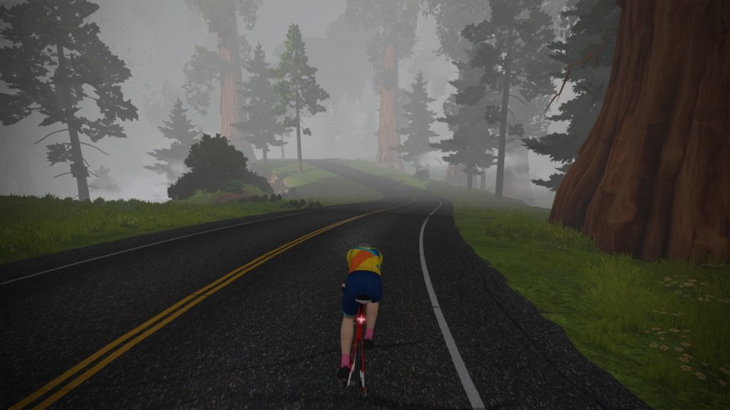 zwift titan's grove misty forest
